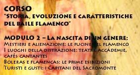 """Corso """"Origine, evoluzione e caratteristiche del baile flamenco"""", parte 2, novembre-dicembre 2013"""