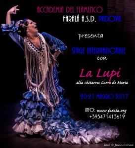 lupi_cartel_azul_peq